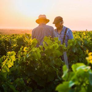 Esperienza: 4 Vignaioli, 4 vitigni, 4 regioni