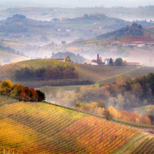 Esperienza: Sua Maestà il Piemonte